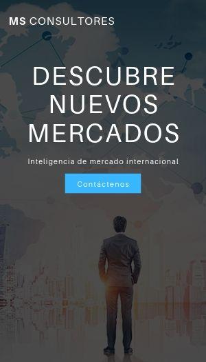 MS CONSULTORES PERU