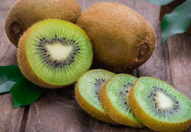 kiwi mercado internacional adondexportar